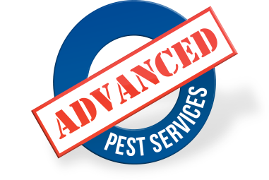 Advanced Pest Services